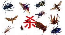重庆杀虫公司为您介绍各种杀虫方法